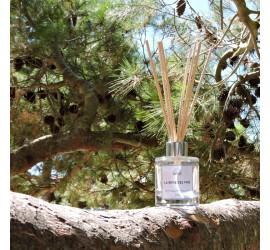 La brise des pins
