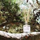 L'ombre légère des pins est le refuge idéal par temps  de chaleur. Pour une balade, une partie de pétanque ou une sieste. Retrouvez l'air frais et tonique des pins dans notre parfum La brise des pins. Disponible en bougie, brume d'ambiance et diffuseur à tiges rotin  . . #bougie #bougieparfumee #brumedinterieur #brumedambiance #diffuseur #pin #eucalyptus #muscade #artisandefrance #fabricationfrancaise #madeinfrance #candle #scentedcandle #roomspray #diffuser #reeddiffuser #homescents #larochelle #charentemaritime #infinimentcharentes #aunisatlantique #aunismaraispoitevin