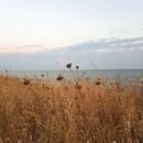 Et vient le temps des jours à 2 saisons: fraîcheur du matin et chaleur d'été l'après-midi. . . #borddemer #ocean #oceanatlantique #coteouest #larochelle #charentemaritime #infinimentcharentes